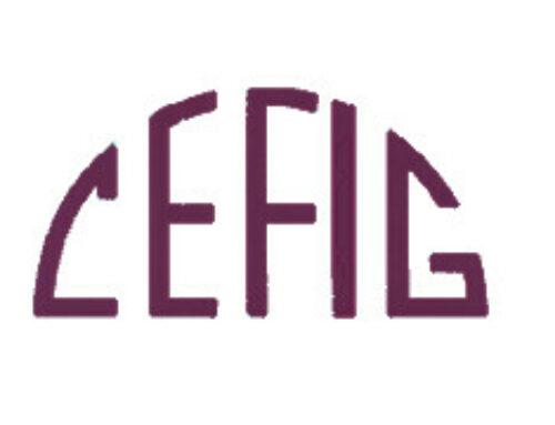 Formateur·trice FLE
